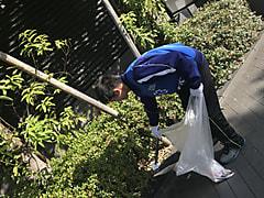 [男子]学校行事参加(大クリーン作戦第2弾)